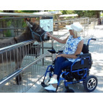 Путешествие на коляске по Крыму