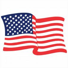 Приключения двух Американок