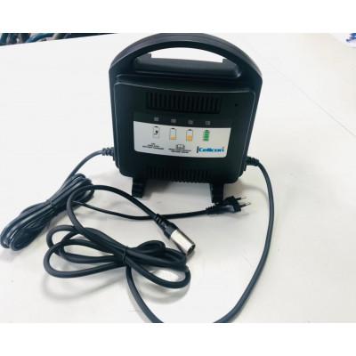 Зарядное устройство для инвалидных колясок Cellcon
